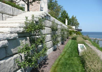 Limestone Steps and Garden